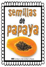 PROTEGE Y MEJORA TU SALUD CON LAS SEMILLAS DE LAPAPAYA