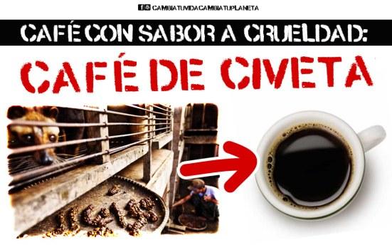 cafe-de-civeta